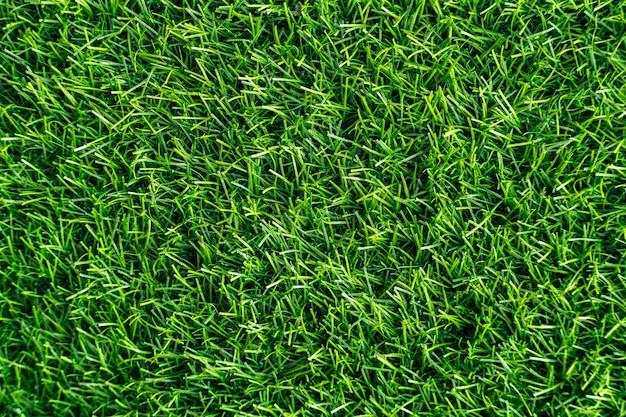Zielona trawa. tekstura tło naturalne. świeża wiosna zielona trawa. - obraz