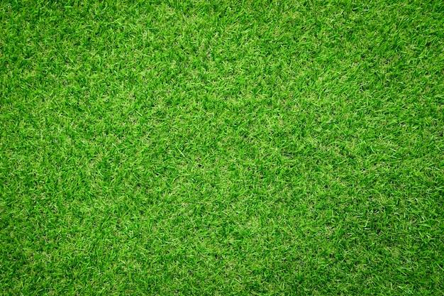Zielona trawa tekstura tło widok z góry jasnego ogrodu trawy