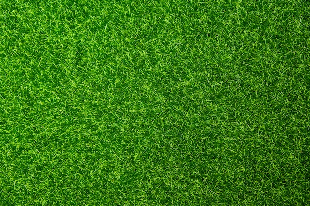 Zielona trawa tekstura tło