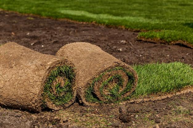 Zielona trawa w rolkach do trawnika i krajobrazu projektanta. układanie rolki zielonej trawy trawnikowej