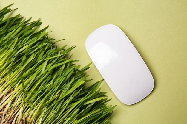Zielona trawa z komputerową myszką na żółto. koncepcja ekologii