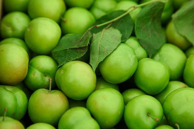 Zielone czereśniowe śliwki z zielonym liścia tłem