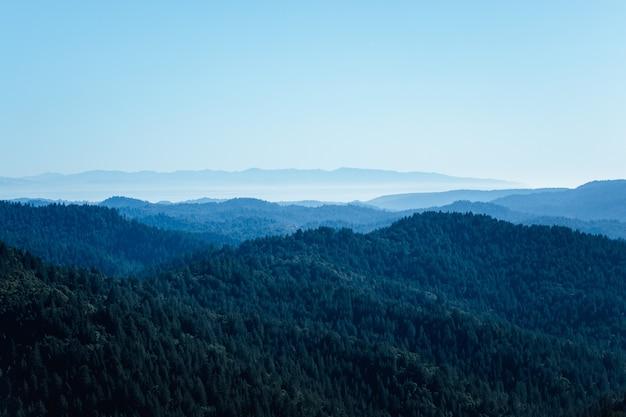 Zielone drzewa na górze pod błękitnym niebem w ciągu dnia