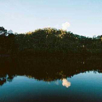 Zielone drzewa odbijające się w jeziorze poniżej w ciągu dnia