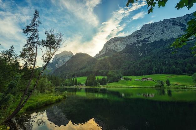 Zielone drzewa w pobliżu jeziora i góry pod błękitnym niebem w ciągu dnia