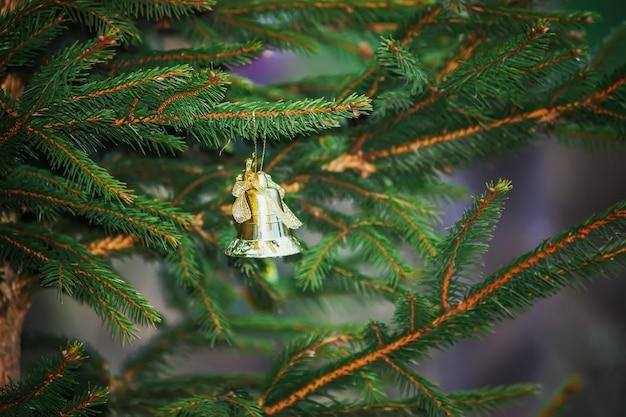 Zielone gałązki jodły z ozdobnym złotym dzwoneczkiem