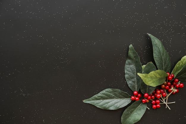 Zielone gałązki roślina z jagodami