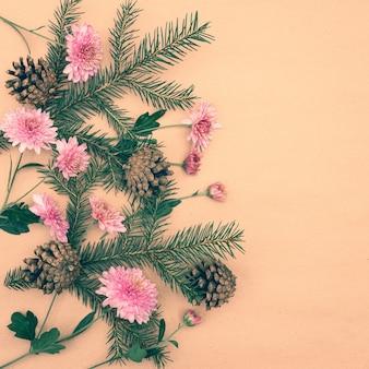 Zielone gałązki świerkowe z szyszkami i różowymi kwiatami chryzantem na pastelowym tle