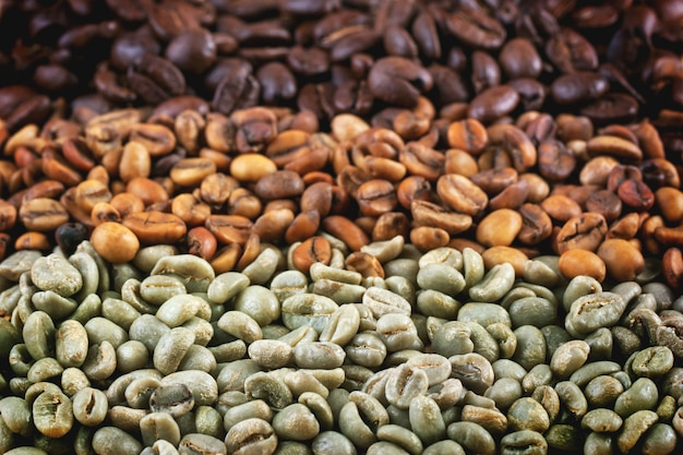 Zielone i brązowe ziarna kawy