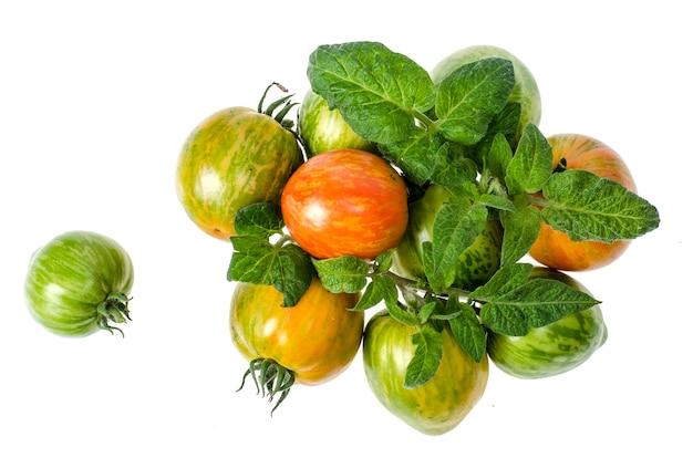 Zielone i dojrzałe pomidory o prążkowanym kolorze skórki.