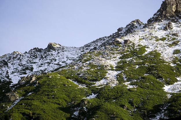 Zielone i zaśnieżone góry w polskich tatrach