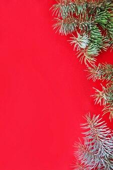 Zielone, iglaste gałązki świerkowe na czerwonym tle z boku.