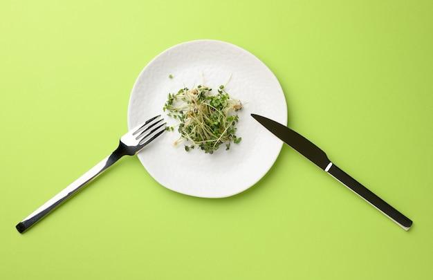 Zielone kiełki chia, rukola i musztarda w białym okrągłym talerzu, widok z góry. zdrowy suplement diety zawierający witaminy c, e i k
