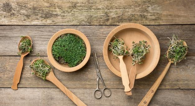 Zielone kiełki chia, rukoli i musztardy w drewnianej łyżce na szarej powierzchni ze starych szarych desek, widok z góry. przydatny dodatek do żywności zawierającej witaminy c, e i k.