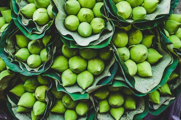 Zielone kwiaty lotosu