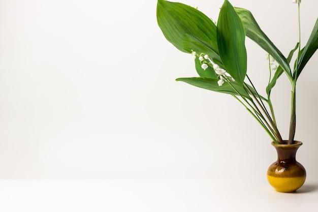 Zielone kwitnące konwalie mogą w wazonie na białym tle