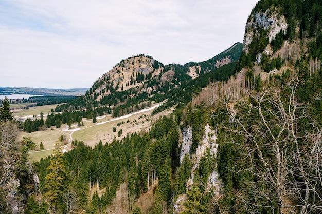 Zielone lasy iglaste w górach z cienkimi warstwami śniegu