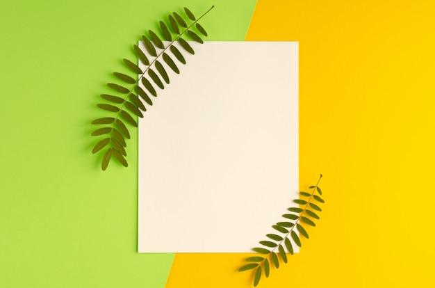 Zielone liście, gałąź akacji i skład białego papieru na żółtym tle.