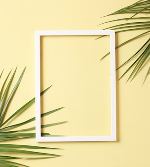 Zielone liście palmowe i biała ramka