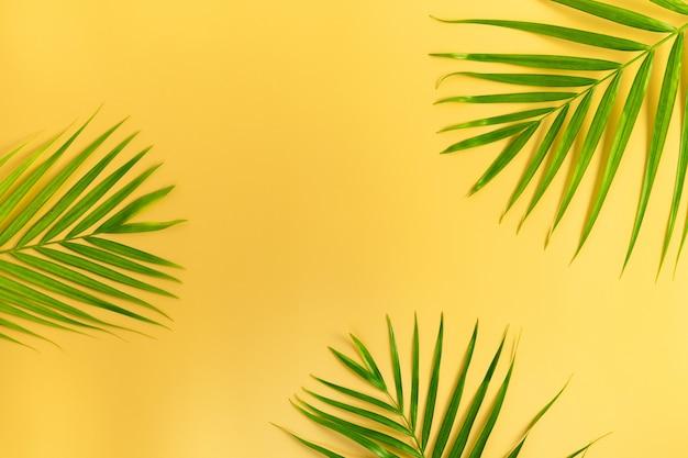 Zielone liście palmowe na żółto