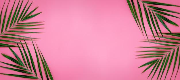 Zielone liście palmy na jasnym różowym pastelowym tle, tropikalne zielone liście palmowe, minimalna koncepcja widok z góry. leżał płasko.