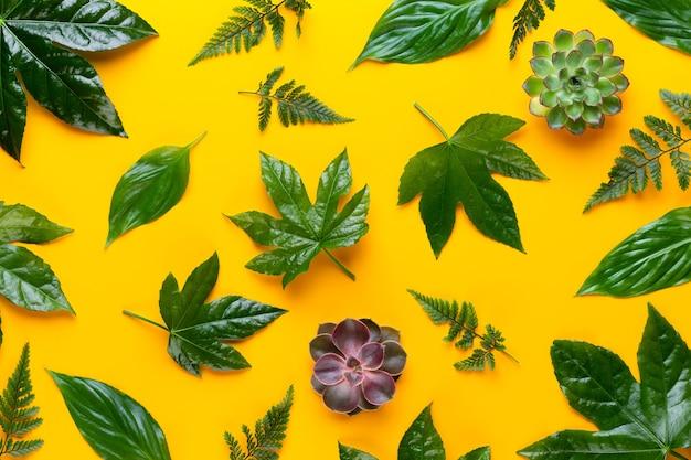 Zielone liście roślin na żółtym tle. styl retro vintage.