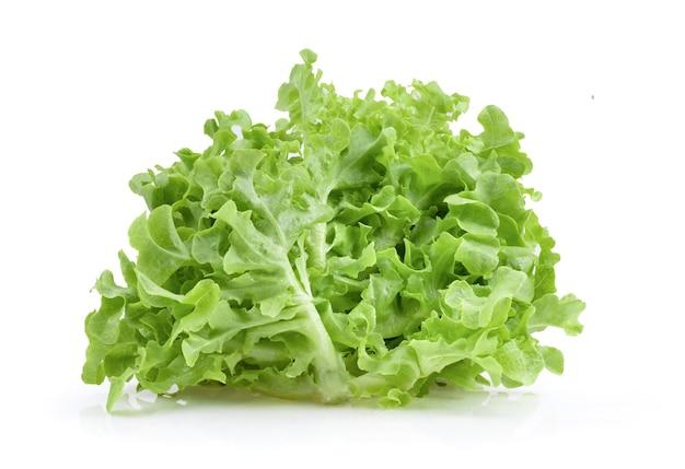 Zielone liście sałaty dębowej na białym tle