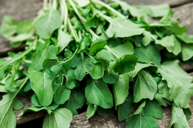 Zielone liście świeżego szpinaku ekologicznego prosto z ogrodu, uprawa warzyw, zdrowy tryb życia