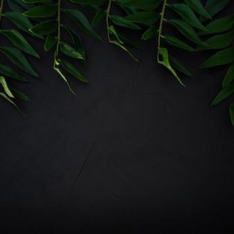 Zielone liście tło. odcień koloru zielonych liści ciemny
