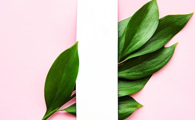 Zielone liście tropikalne