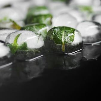Zielone liście w kostkach lodu