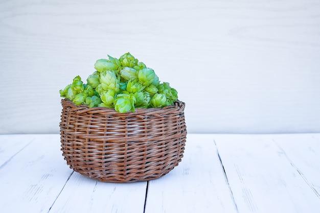Zielone owoce chmielu w wiklinowym koszu na białym drewnianym