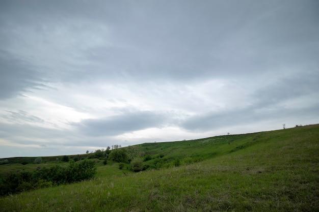 Zielone piękne łąki pod zachmurzonym niebem wczesnym latem