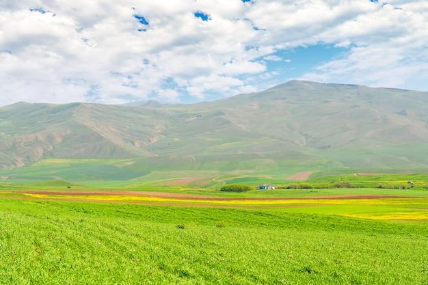Zielone pola uprawne u podnóża gór