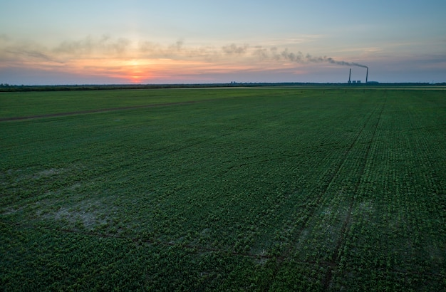 Zielone pole i kolorowy zachód słońca. zdjęcie lotnicze wykonane przez drony