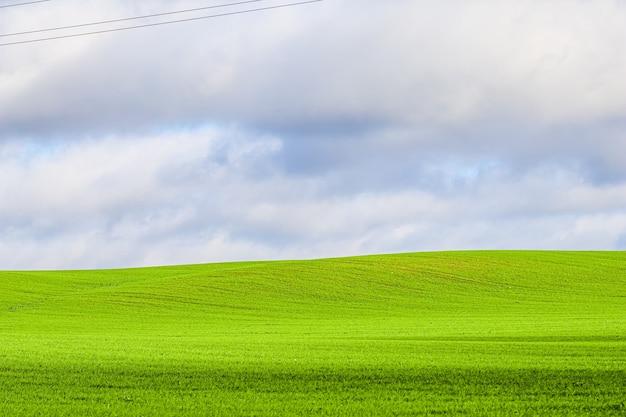 Zielone pole trawy na wzgórzach i błękitne niebo z chmurami w naturalnym krajobrazie wsi