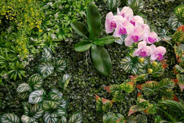 Zielone rośliny ozdabiają drewniane ściany