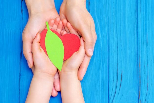 Zielone serce w rękach dorosłych i dzieci