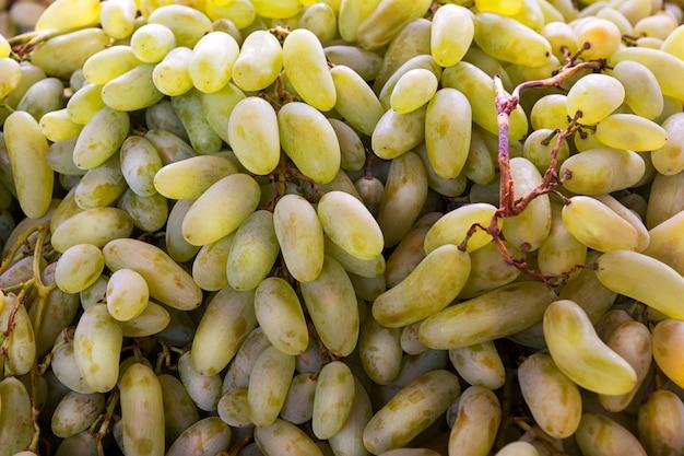 Zielone tło winogron