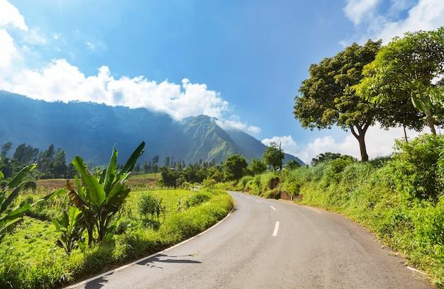 Zielone tropikalne krajobrazy na wyspie jawa, indonezja