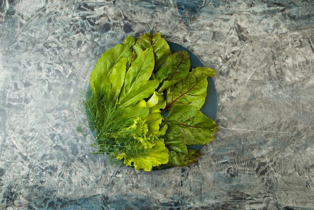 Zielone warzywa. sorrel sałatka z liści kopuje koperty na ciemnym teksturze.