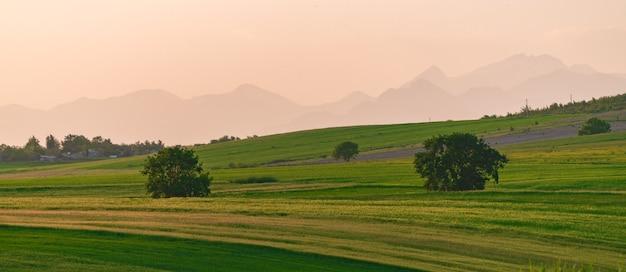 Zielone wzgórza i pola uprawne pod górami