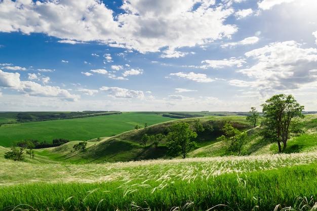 Zielone wzgórza z drzewami i trawą pod chmurami mijania