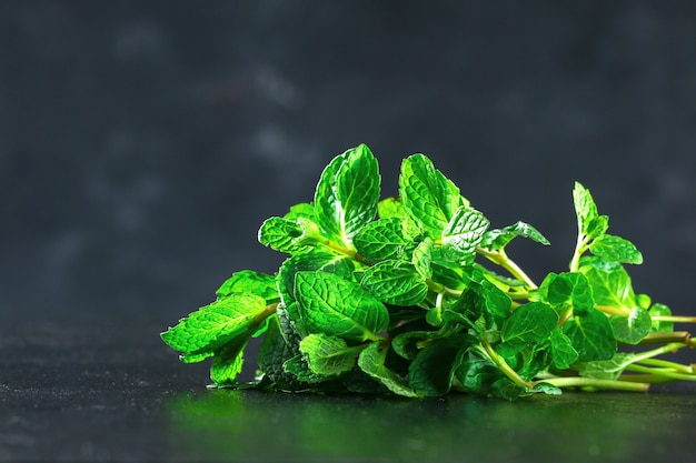 Zielone zioło kulinarne mięta mięta pieprzowa, mięta zielona