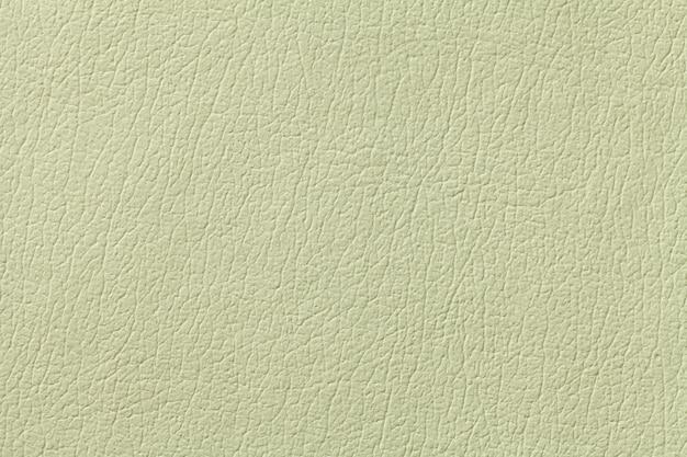 Zielonej oliwki tekstury rzemienny tło, zbliżenie