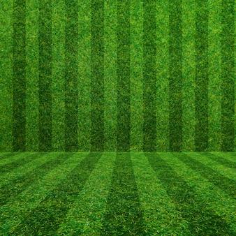 Zielonej trawy boisko do piłki nożnej tło
