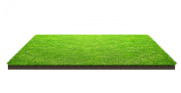 Zielonej trawy pole odizolowywający z ścinek ścieżką. boisko sportowe. letnie gry zespołowe.