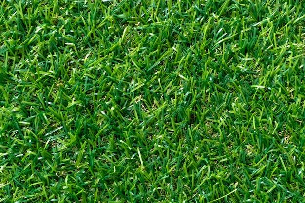 Zielonej trawy tekstura dla tła. zielony wzór trawnika i tekstury. widok z góry.