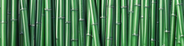 Zielony bambusowy tło