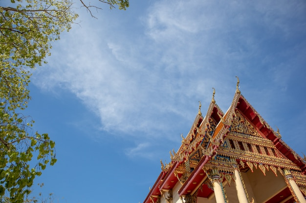 Zielony bodhi drzewo i dach świątynia z niebieskim niebem.